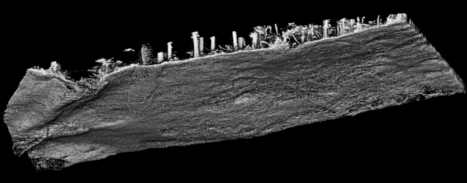 A black and white point cloud depicting the underside topology of a section of dense forest.